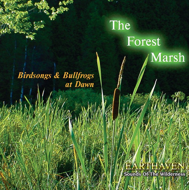 The Forest Marsh CD Cover